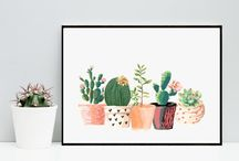 Projet cactus