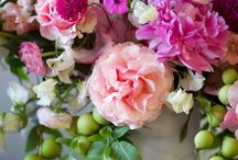 Floral Galore / Arrangements and wallpapers