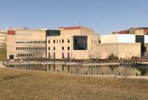 My University NKU / by Jeff Iker