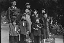 American-Chinese/Japanese etc