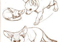 obrazy kreska zwierzęta