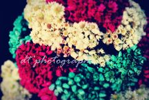 Photography / My Photography with canon