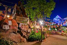 Disney's Animal Kingdom / What I love about Animal Kingdom!
