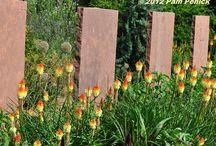 Indigenous garden ideas