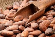 Global Cocoa Beans Market