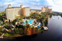 Festivals of Speed Orlando | Motorsports and Luxury Display | Ritz Carlton