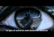 Holistic Universe / by Luis Ron