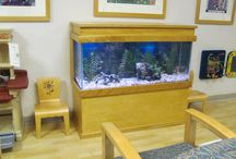 Choosing the Aquarium Stands