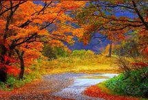 Autumn type