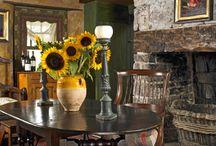 Sunflowers / by Donna Clayton Lloyd