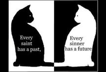 Ironic and Paradoxical pictures