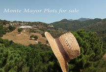 Monte Mayor Plots for sale