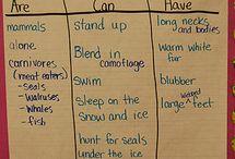 January Lesson Plans