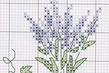 cross st lavender,violet,rose,pansy