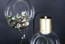 Lamp & plant