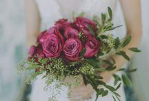 Amber Gress Photography