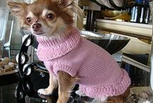 """It-Dogs winter 2013/14 collection  """"Winter love in Cortina"""" www.it-dogs.com / Luxury Pet brand"""