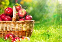 Fitness and Nutrition / Includes eating healthy with apples, cherries, and pears, and living a healthy lifestyle.
