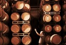 Art of Winemaking / Select photos from Woodbridge by Robert Mondavi Winery in Lodi, CA.