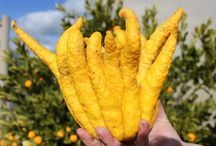Australian Produce Beauties