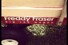 Freddy Fraser
