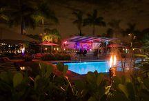 Travel - Miami / Miami