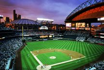 Been there - ballparks I've been to / by Jennifer Aaby Piplic