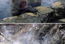 Hot Springs Around the World / Famous Hot Springs of the World