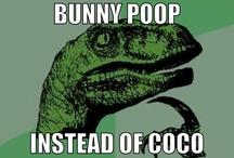 Funny stuff c: / by Snowyowl4126