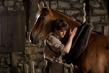 Movie Horses- the wild and the beautiful