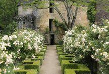 GARDEN GREEN / Beautiful colourful wonderful outside spaces. Gardens, garden design, garden buildings. #garden #plants #planting #flowers #garden design