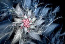 fractals (Jeanette)