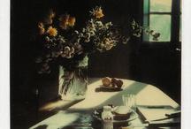 Polaroids de Tarkovsky