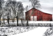 Barns / by Terry Anglin Morett