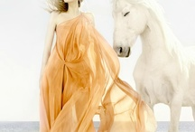 with horses