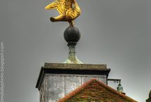 notes / winged weathervanes, historic