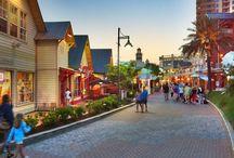 Florida Vacation / by Sara Reeves