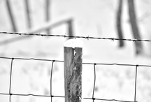 Post and Fences