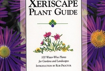 Xeriscape Plants / by Elaine Starling
