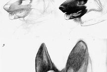 hond miel