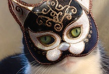 Masked cats