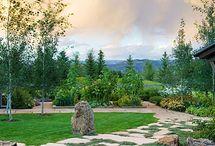 Yard and Garden / by Nicole Rauch