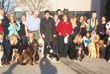 Pet Visiting Program- Volunteer today!