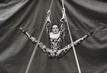 Cirque / by Tatjana Mailand