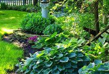 ♣Piha ja puutarha♣
