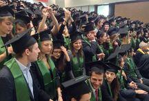 Remise de diplômes Grande Ecole MSc in Management 2014