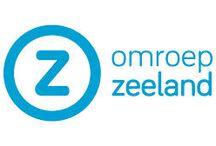 Logo huisstijl / over de huisstijl van het logo