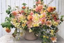 arrangement dahlia