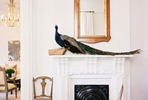 Home Design / by Wren Coventry-Smith