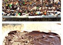 Desserts / Puddings etc
